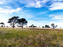 L'Australia centrale Immagine Stock