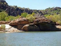 L'Australia, fiume dell'alligatore, parco di kakadu Fotografia Stock Libera da Diritti