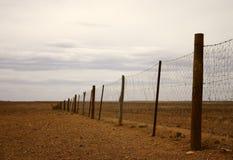 L'Australia - rete fissa del dingo Immagini Stock