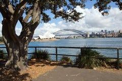 L'Australia, Sydney, orizzonte, Nuovo Galles del Sud fotografia stock libera da diritti