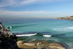 L'Australia: Vista della città della spiaggia di Tamarama con i surfisti Fotografia Stock