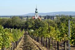 L'Austria, agricoltura Immagini Stock
