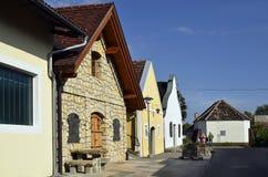 L'Austria, agricoltura, fabbricazione di vino Immagine Stock