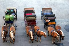 L'Austria - Salisburgo - attesa dei carrelli Fotografia Stock