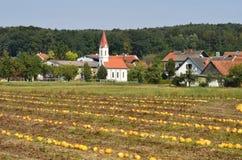L'Austria, Stiria, agricoltura Fotografie Stock Libere da Diritti
