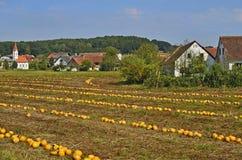 L'Austria, Stiria, agricoltura Immagine Stock