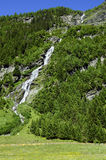 L'Austria, Tirolo, natura Immagine Stock