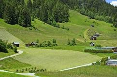 L'Austria, Tirolo, zona rurale Fotografia Stock