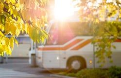 L'autobus à la station encadrée par automne a coloré des feuilles des arbres Photographie stock libre de droits