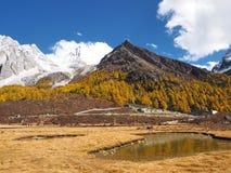 L'automne à la réserve naturelle de Yading dans le comté de Daocheng, la Chine Photos stock