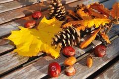 L'automne Image libre de droits