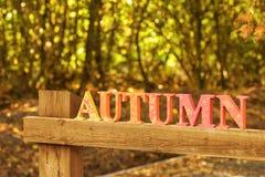 L'automne Images libres de droits