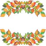 L'automne coloré s'embranche la frontière 2 Photo libre de droits