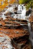 L'automne de l'automne Photos libres de droits