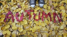 l'automne de mot écrit dans des feuilles rouges Photos stock