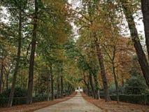 L'automne de parc de retraite Images libres de droits