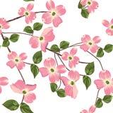 L'automne de ressort fleurit le modèle sans couture Fond floral de style d'aquarelle Photo stock