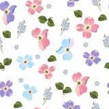 L'automne de ressort fleurit le modèle sans couture Fond floral de style d'aquarelle Photographie stock libre de droits