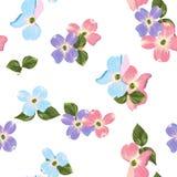 L'automne de ressort fleurit le modèle sans couture Fond floral de style d'aquarelle Images libres de droits