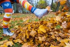 L'automne donne un coup de pied le cul Image libre de droits