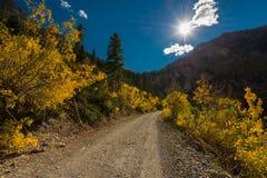 L'automne du Colorado de tellurure de passage d'ours noir colore Autumn Landscape Photos stock
