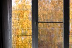 L'automne en dehors de la fenêtre, les feuilles d'orange et l'automne pleuvoir Image stock
