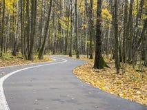 L'automne entrant de rotation de route goudronnée se garent de la vue extérieure Photographie stock libre de droits
