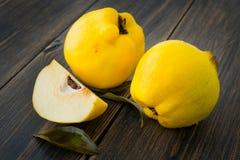 L'automne jaune de pomme de coing ou de reine porte des fruits avec des feuilles Photo stock