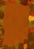 L'automne laisse la trame. Images stock