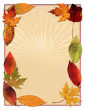 L'automne laisse le fond Photos libres de droits