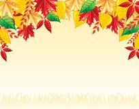 L'automne pousse des feuilles en arrière Photo libre de droits