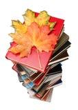 l'automne réserve la pile de lames Photographie stock libre de droits