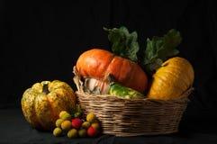 L'automne a (2) venu Images stock