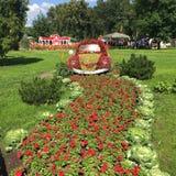 L'automobile dai fiori Fotografia Stock Libera da Diritti