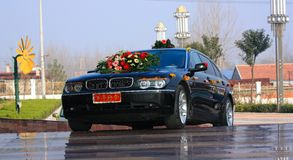 L'automobile di cerimonia nuziale Fotografia Stock Libera da Diritti