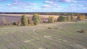 L'automobile di vista aerea guida sulla strada a terra fra i campi video d archivio