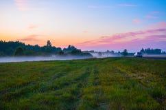 L'automobile guida nella nebbia di sera Immagini Stock Libere da Diritti