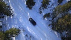 L'automobile guida su una strada dell'inverno fra il legno e archivi video