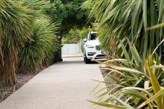L'automobile ha parcheggiato nel modo dell'azionamento con le palme Fotografia Stock