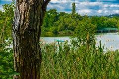 L'autre nature Photos stock