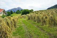 L'Autriche, Tyrol photo stock