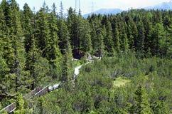 L'Autriche, Tyrol, nature Images stock