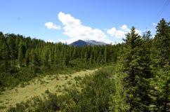 L'Autriche, Tyrol, parc naturel Image libre de droits
