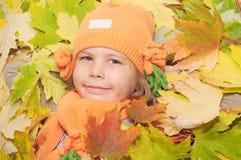 L'autunno è arrivato fotografia stock libera da diritti