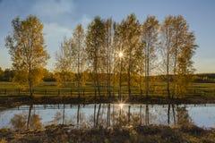 L'autunno è differente Fotografie Stock Libere da Diritti