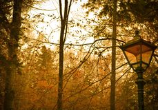 L'autunno immagini stock libere da diritti