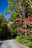 l'autunno colora camminare del percorso Fotografia Stock