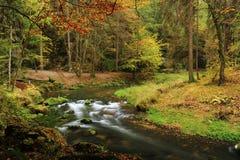 L'autunno colora il fiume Fotografie Stock Libere da Diritti