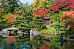L'autunno colora il giardino giapponese Fotografie Stock Libere da Diritti