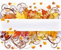 L'autunno condice la scheda Fotografia Stock Libera da Diritti